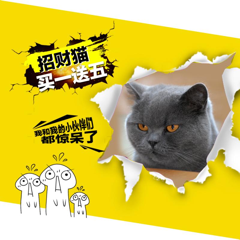 淘宝天猫直通车创意图主图|电子商务/商城|网页|yuan图片