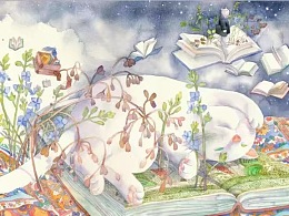 波斯猫派克在冬日的奇遇