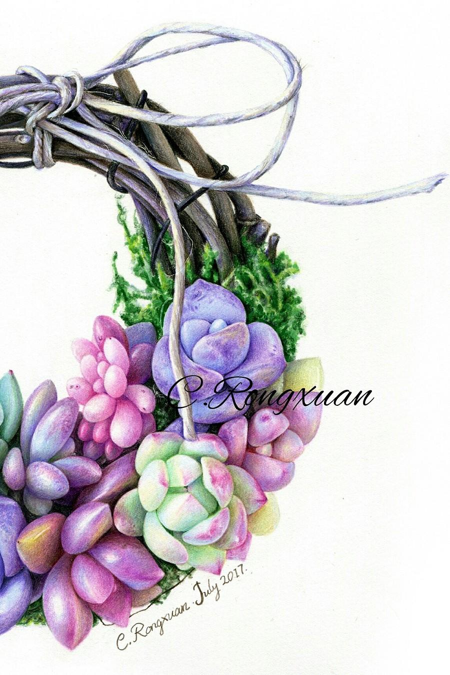 【溶萱彩铅手绘】多肉花环