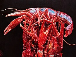 【彩色圆珠笔手绘】龙虾啊龙虾