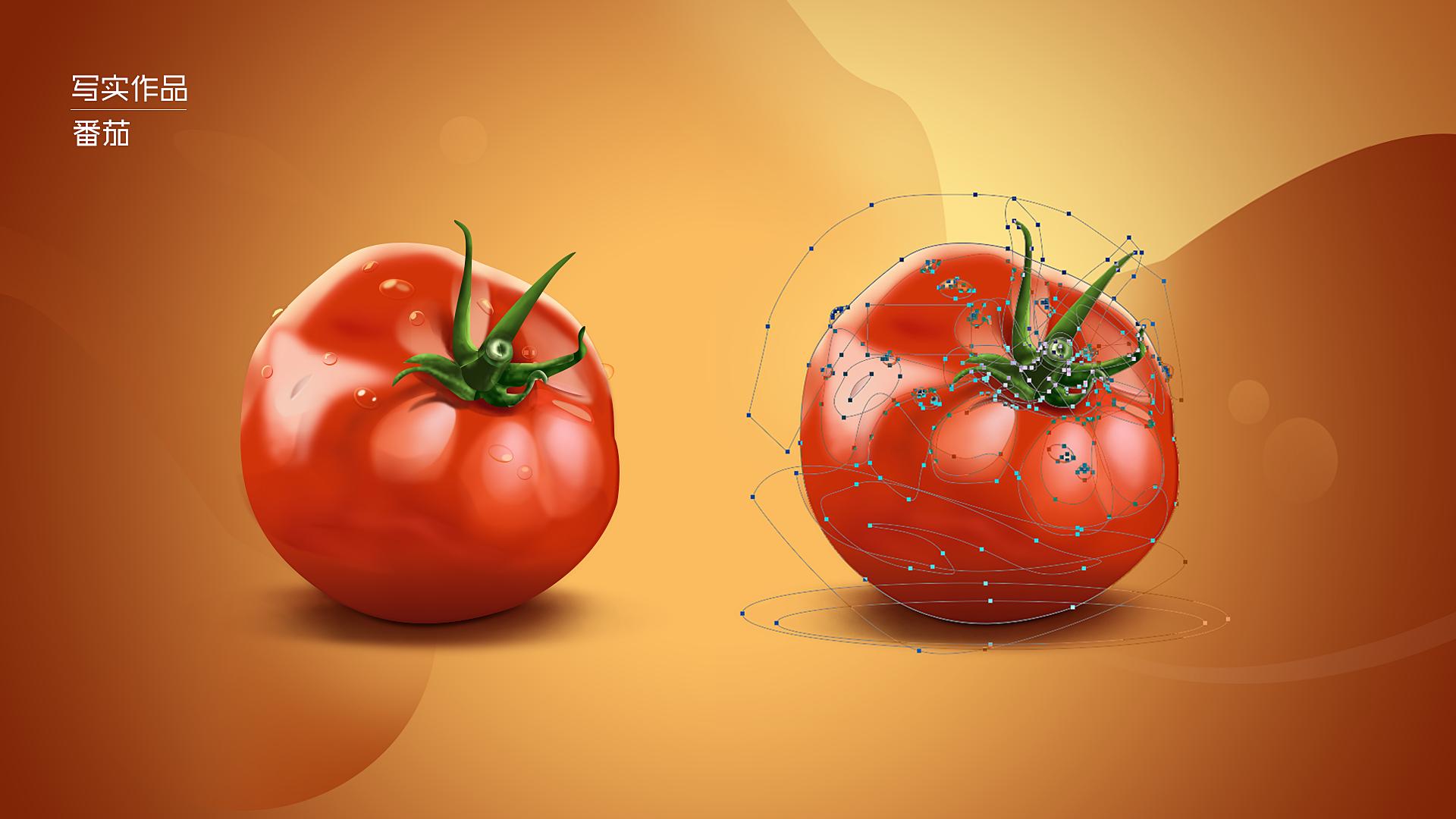 写实作品——番茄