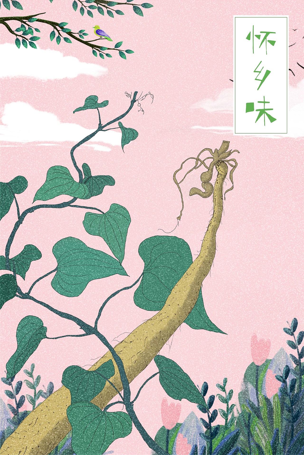 怀牛膝_怀·乡·味产品包装插画|平面|包装|吥規則 - 原创作品 - 站酷 (ZCOOL)