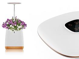 SKYYE - Hydroponic Flowerpot