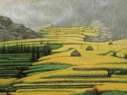 我的油画风景作品《丰收中的梯田》