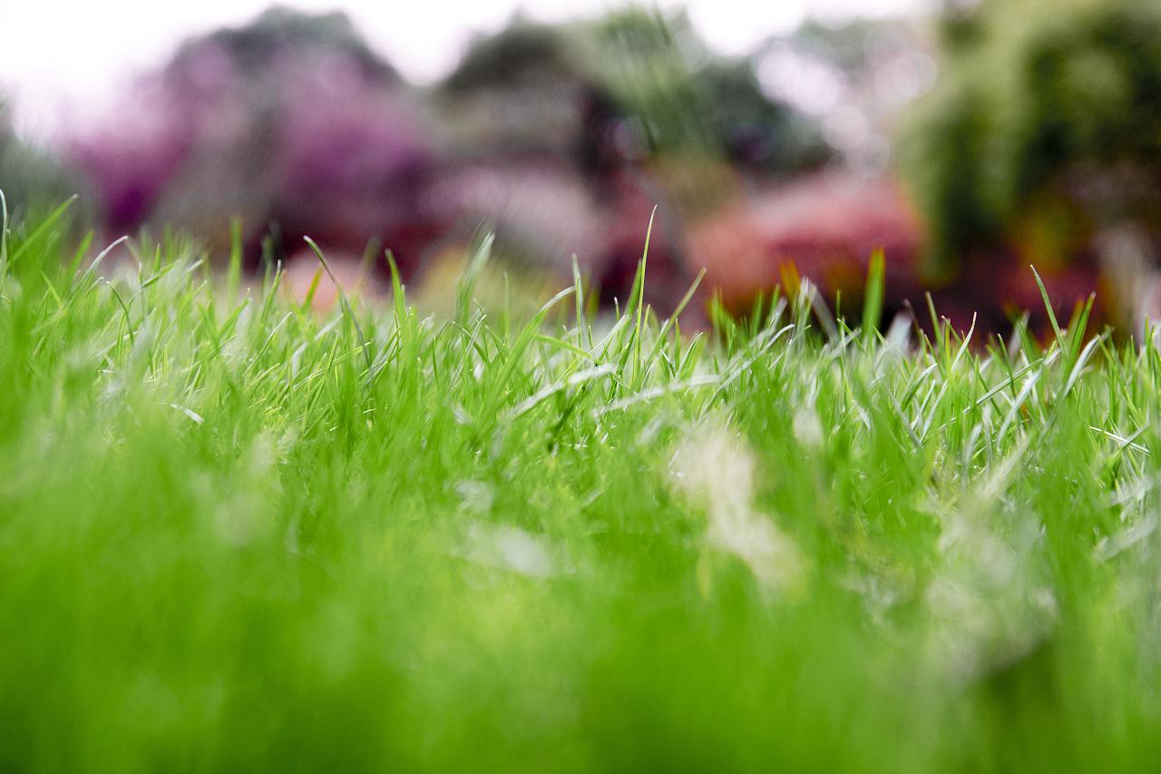 冬天里的春天经典语录 冬天里的春天好词好句