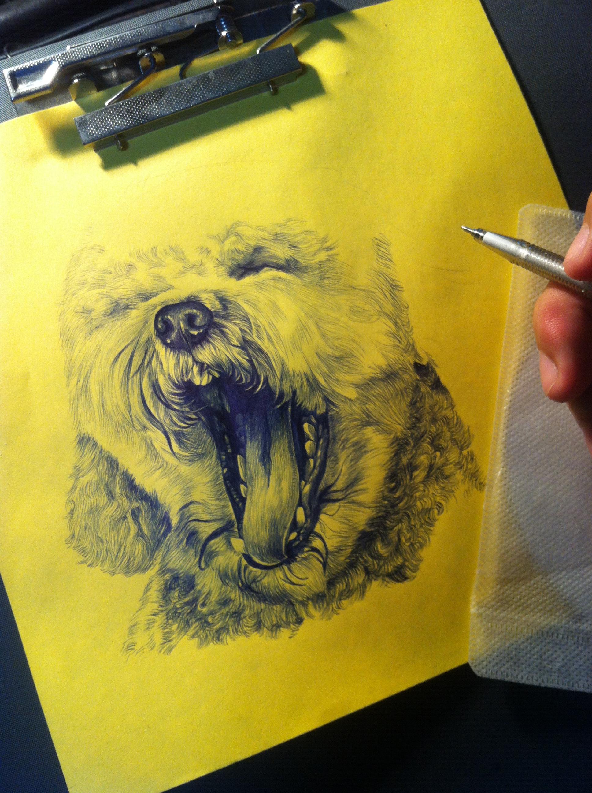 圆珠笔手绘 狗