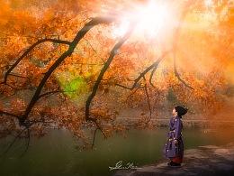 颐和园神树