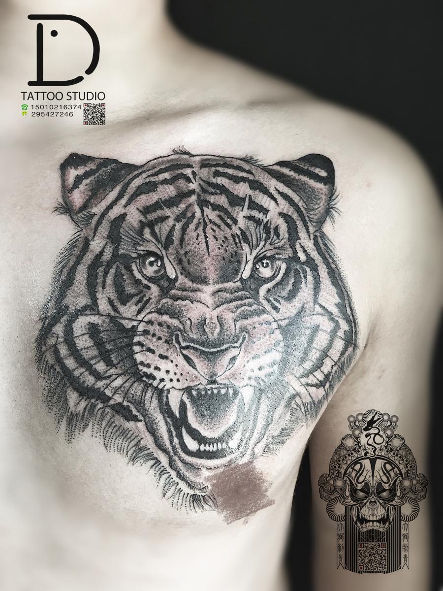 老虎纹身|其他|其他|刺青师大龙 - 原创设计作品
