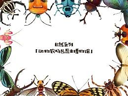 近期动物&昆虫合集