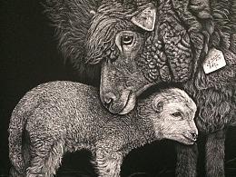 李子哥刮画作品《幸福的羔羊》