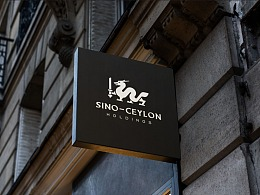 SINO-CERLON HOLDINGS | 中斯控股品牌设计