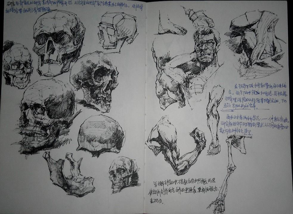 我的手绘本.
