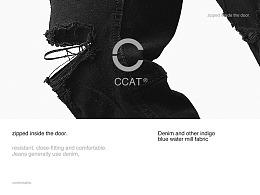 CCAT官网视觉