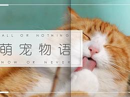 萌宠物语清新画册模板