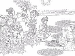 """""""昌宁号茶铺""""茶叶生产工艺流程插画绘制"""