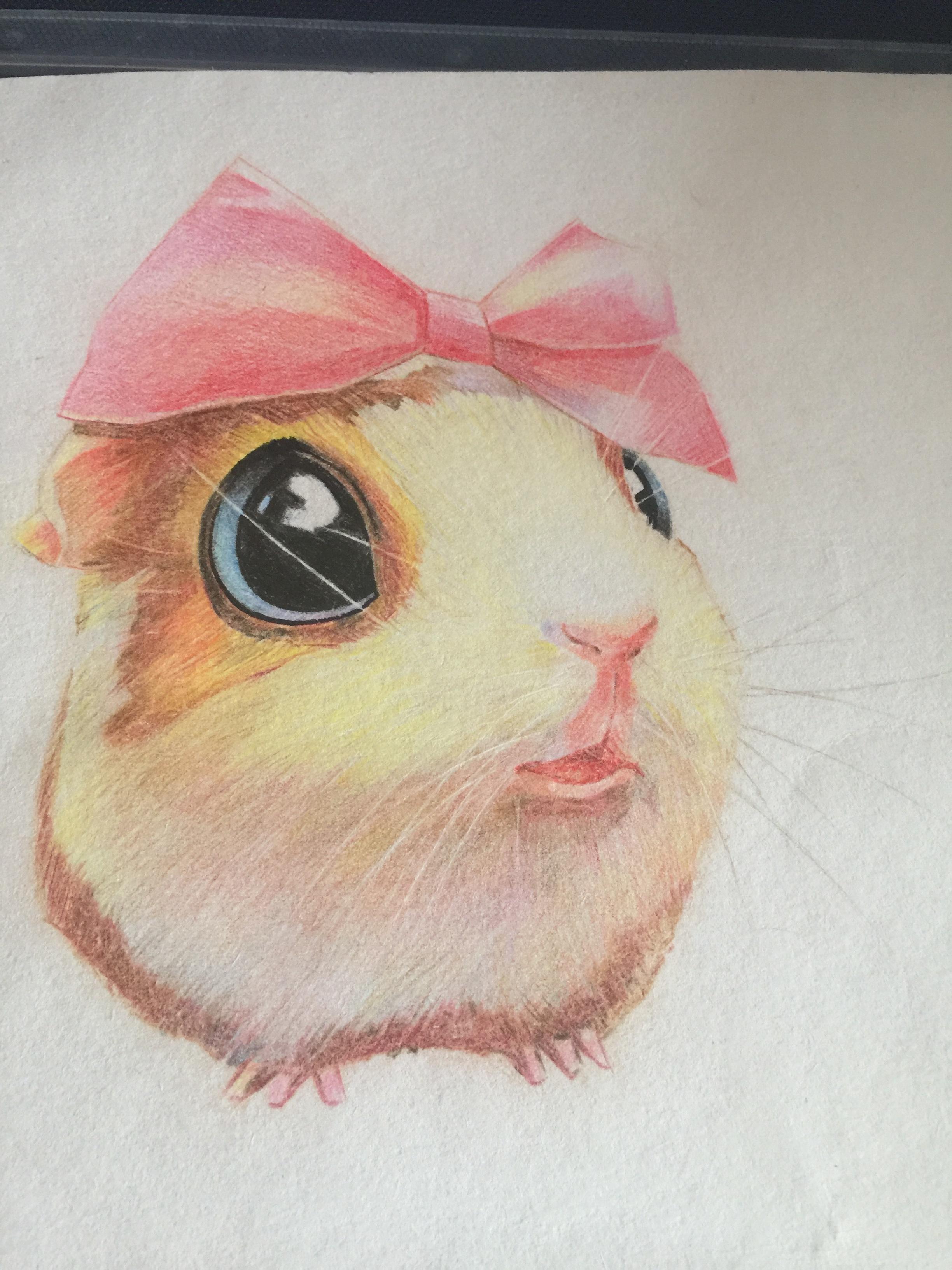 手绘小仓鼠