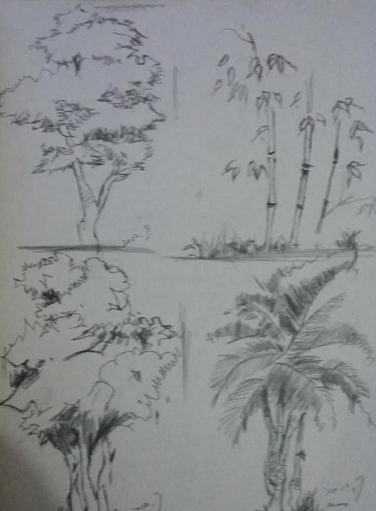 西递水粉_树木写生速写_树木写生_速写风景树的画法_速写树木的画法_楚楚 ...