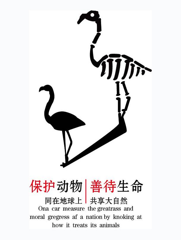 保护动物|海报|平面|莫虫儿
