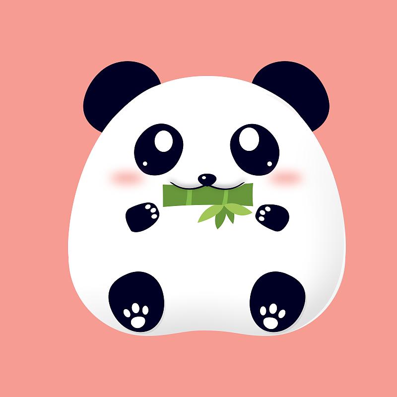 萌萌哒小动物图片
