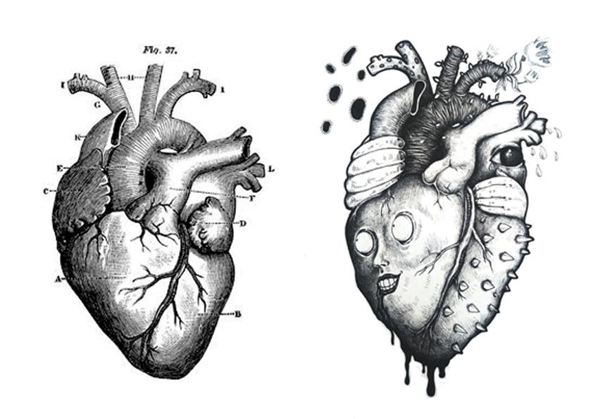 心脏结构简图手绘图