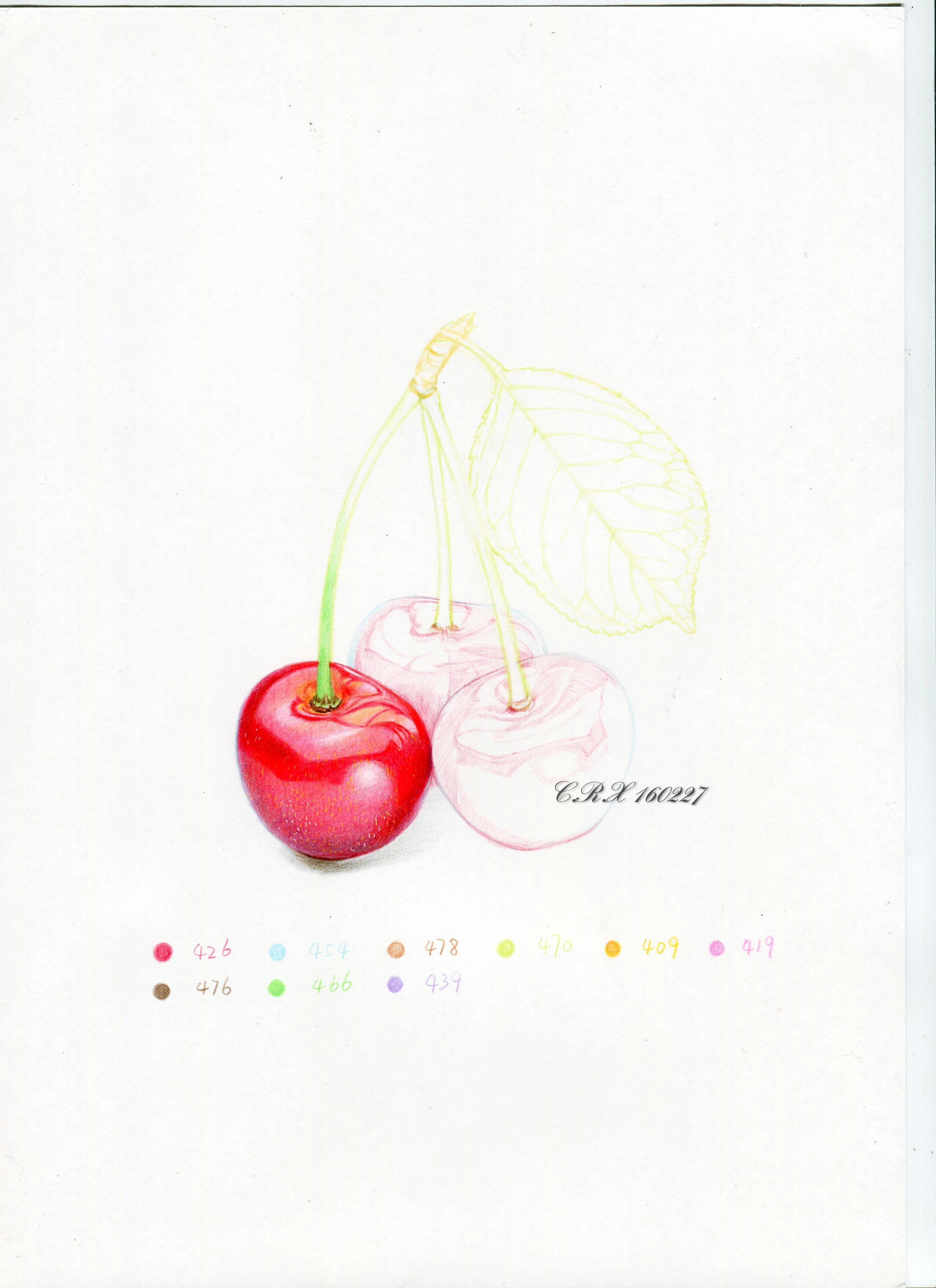 【彩铅水果】青岛大樱珠