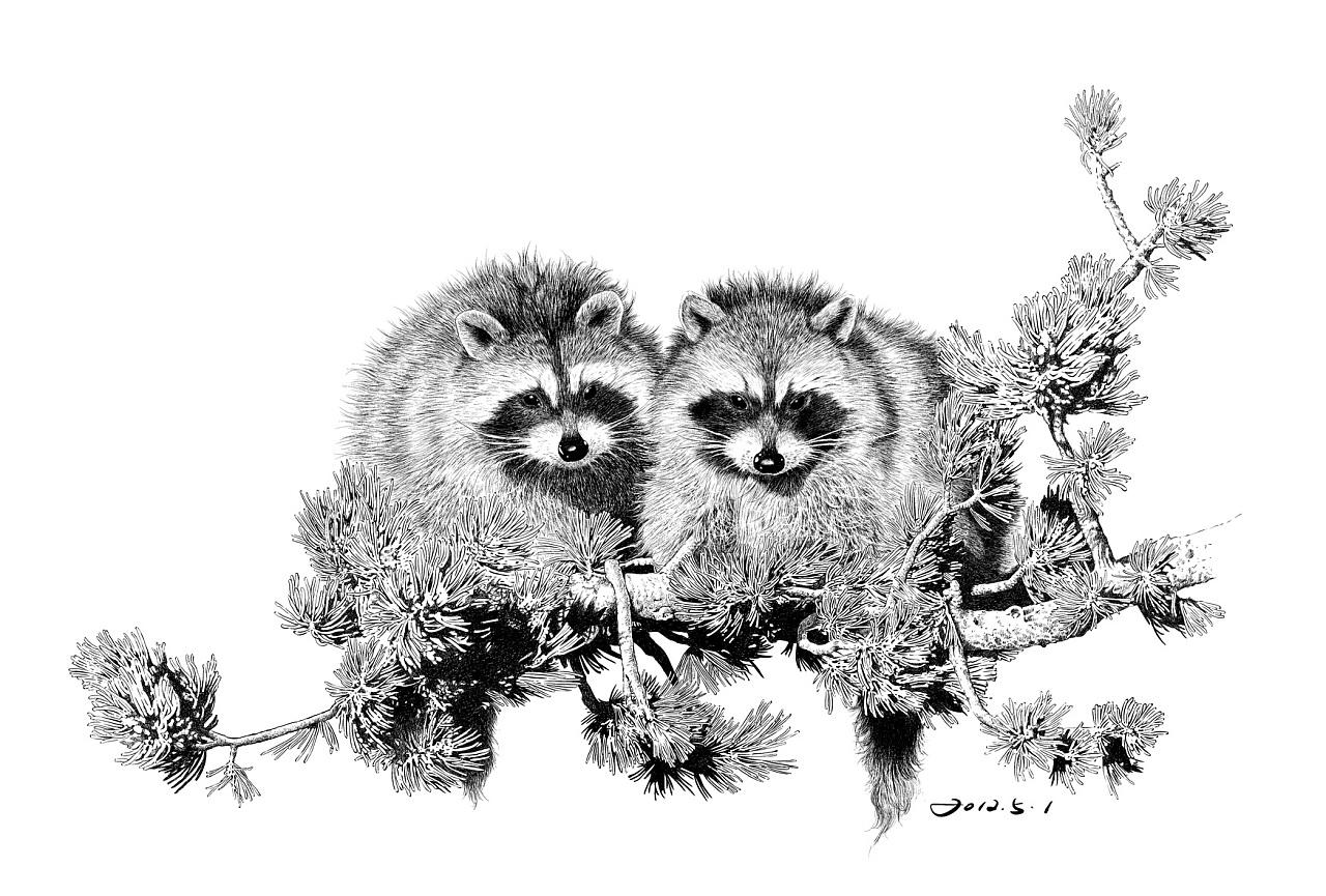 楚歌钢笔画-动物系列