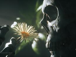 骷髅系列-花花世界