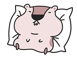 表情包《土拨猪睡不醒》