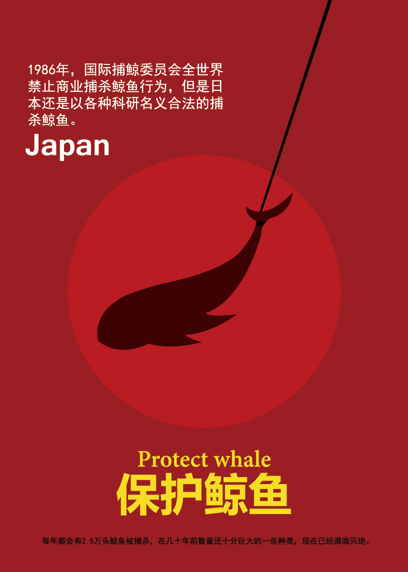 保护鲸鱼,公益海报,banner图片