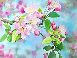 水彩花卉 步骤图