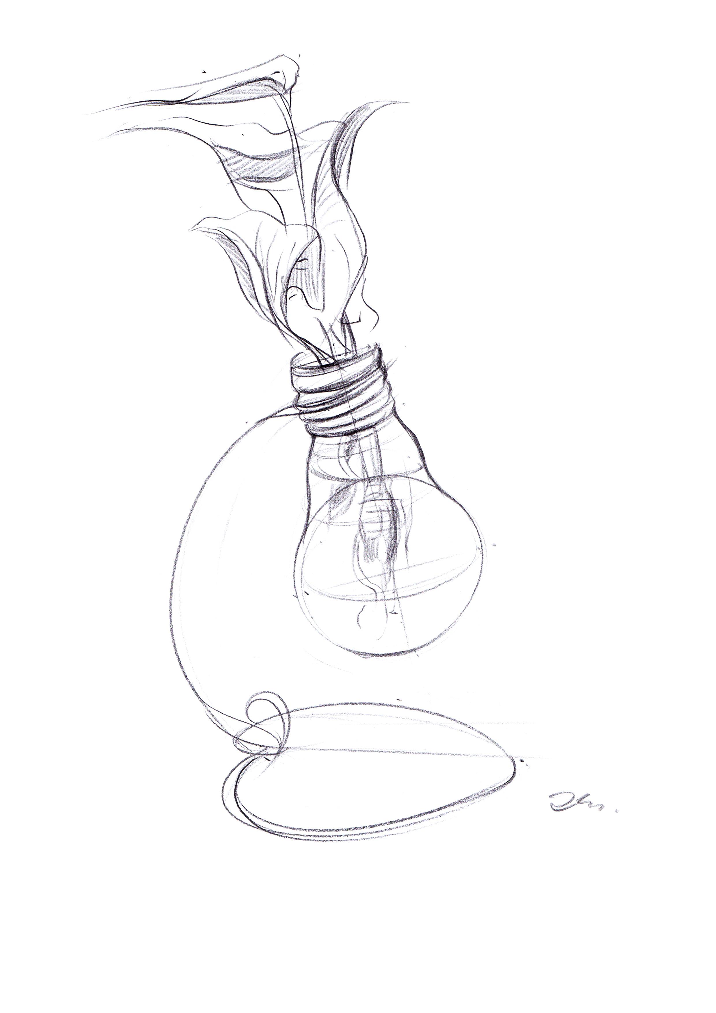 笔手绘灯泡植物