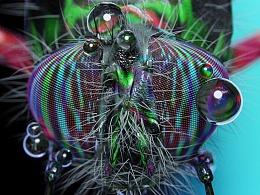 Digital Phanerozoic-亂碼昆蟲學