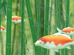 竹林锦鲤—概念镜头合成测试