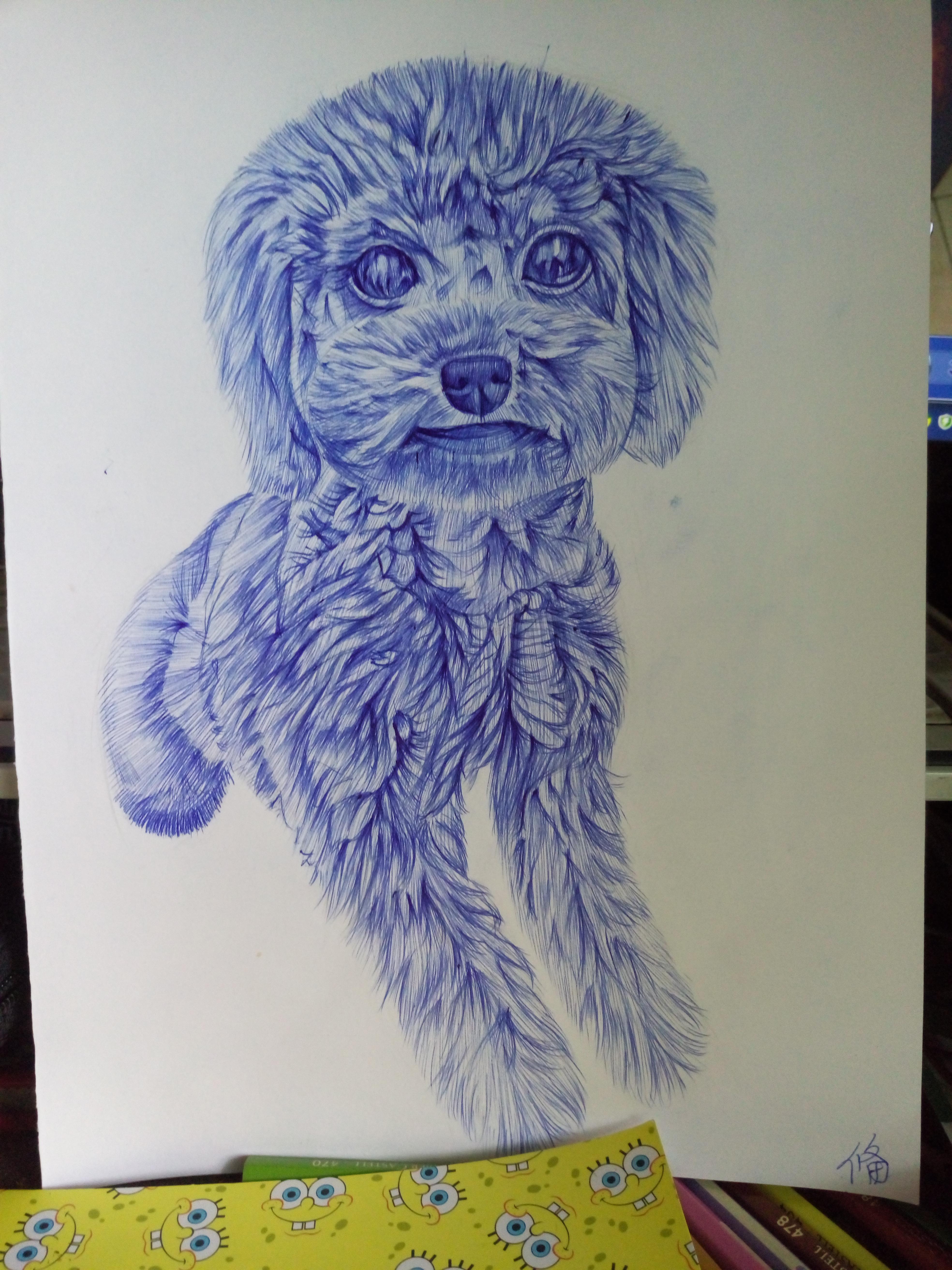 圆珠笔画的侄女家狗狗