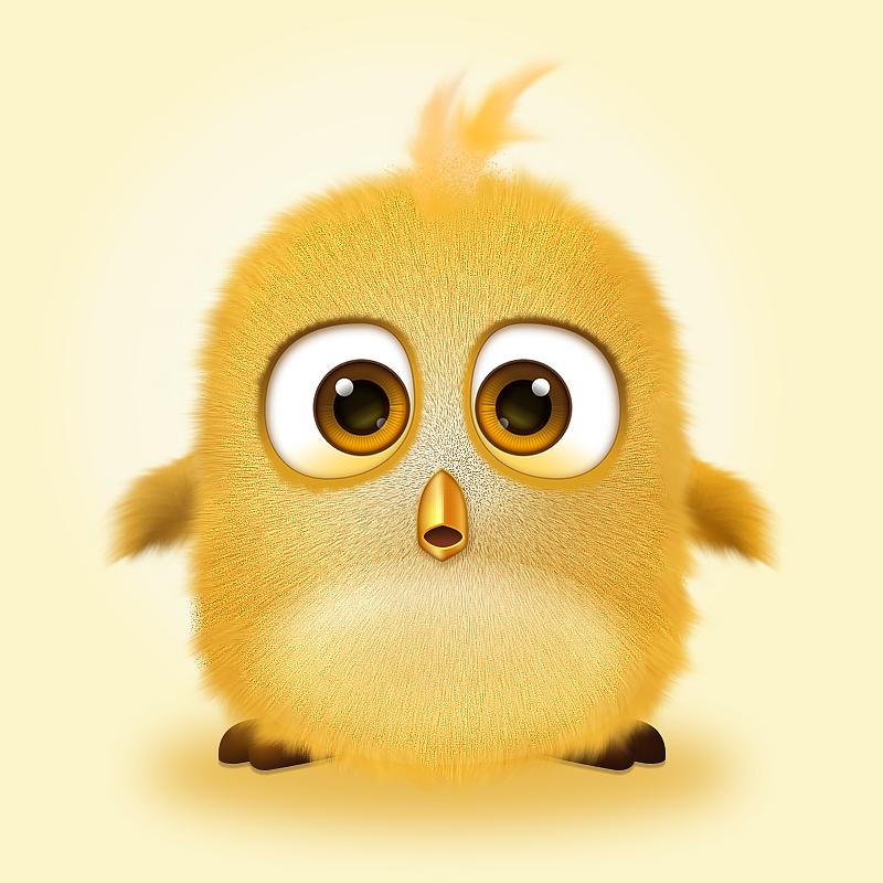 毛茸茸的小萌鸟练习