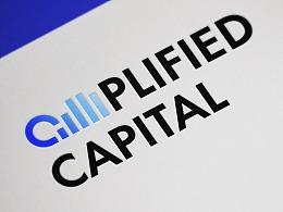 AMPLIFIED CAPITAL 品牌视觉系统 标识设计