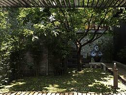 记忆里的院子