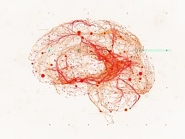 Network    |   神经网络