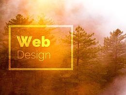 网页设计-安全类