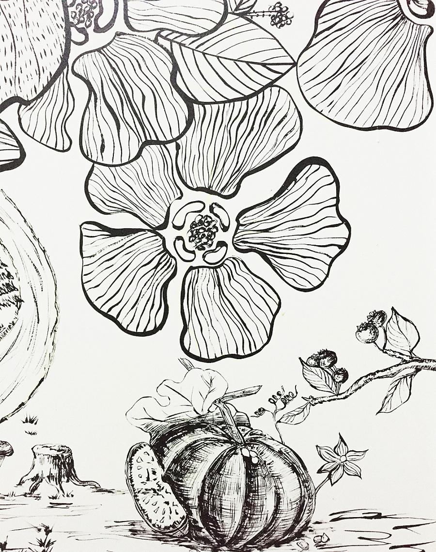 手绘线条|绘画习作|插画|queenazhu