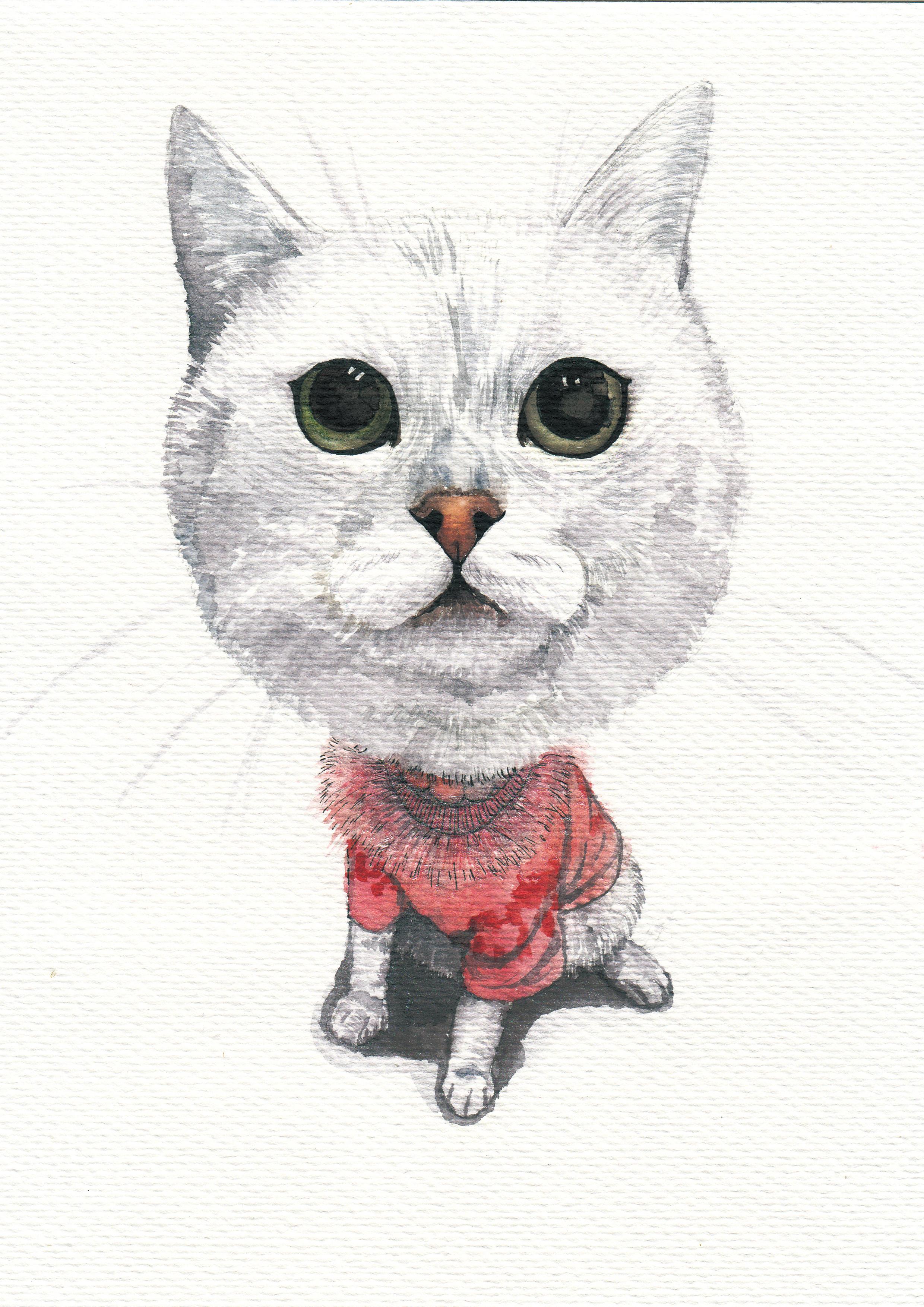 飞线手绘猫图片