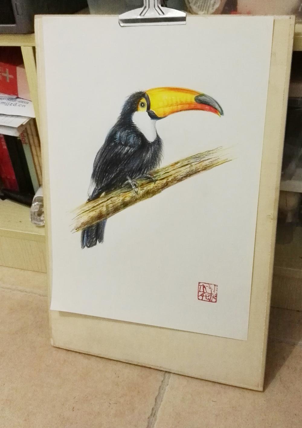 大嘴鸟2花鸟彩铅手绘实木画框家居装饰画