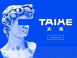 太禾(TAIHE)品牌形象设计