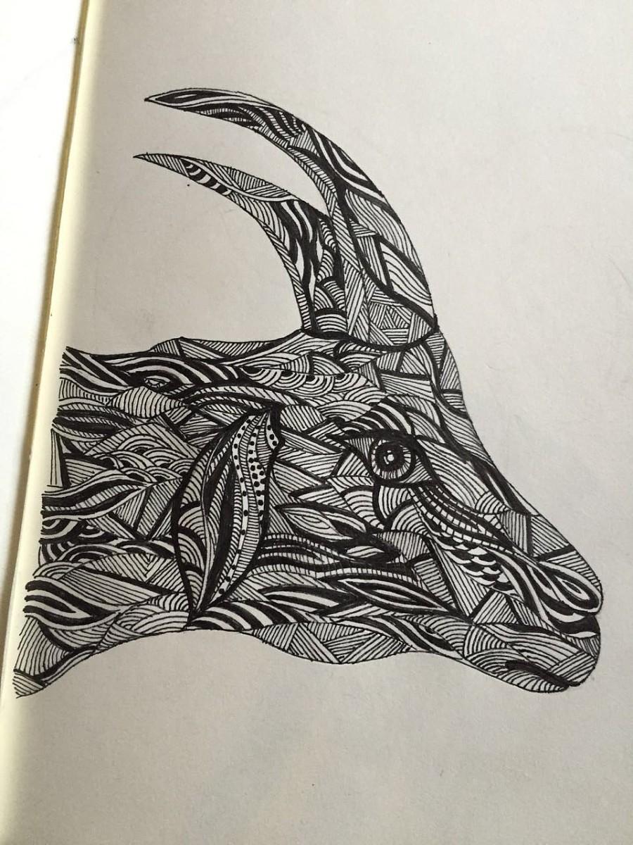 原创作品:动物手绘