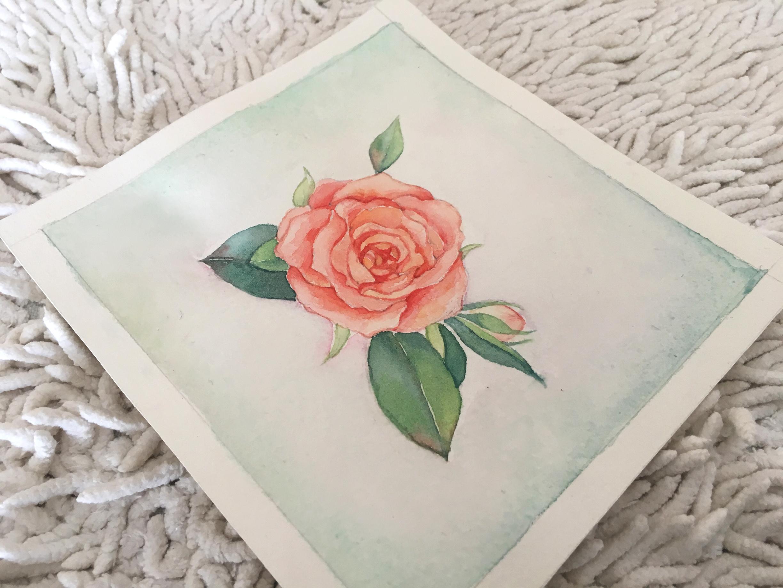 水彩玫瑰手绘