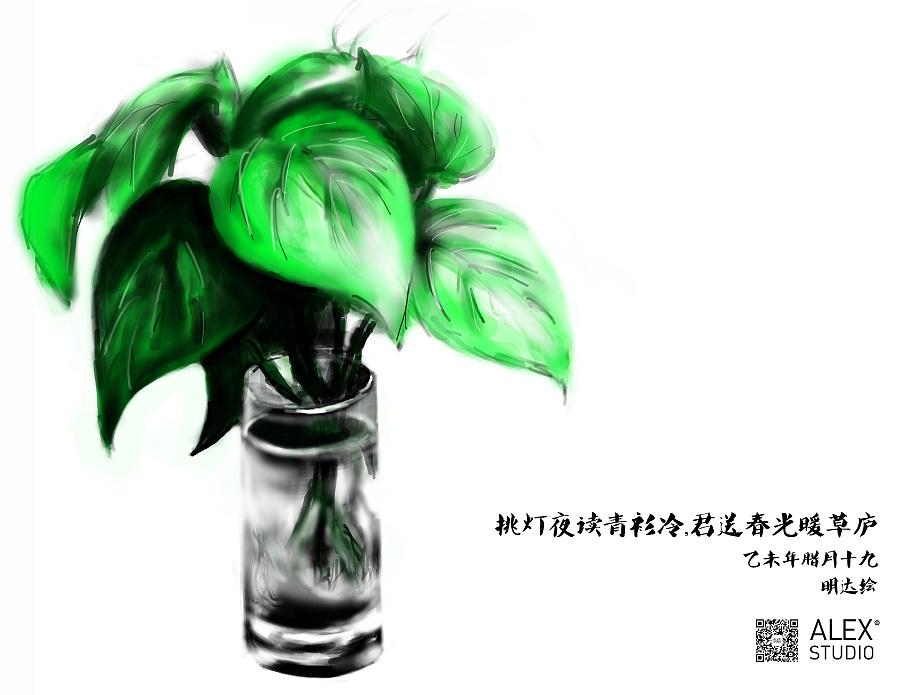 手绘绿萝|绘画习作|插画|柯小布