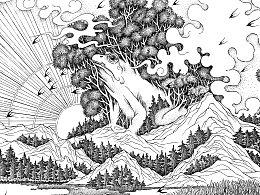 森林的答案品牌插画设计