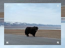 西游—【青海-西藏】