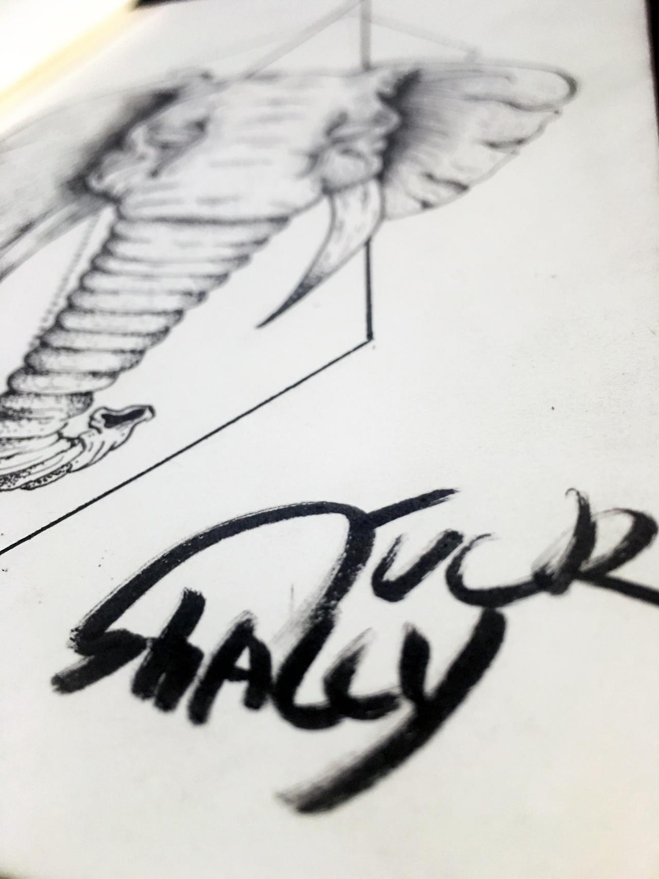 手稿插画纹身日常练习