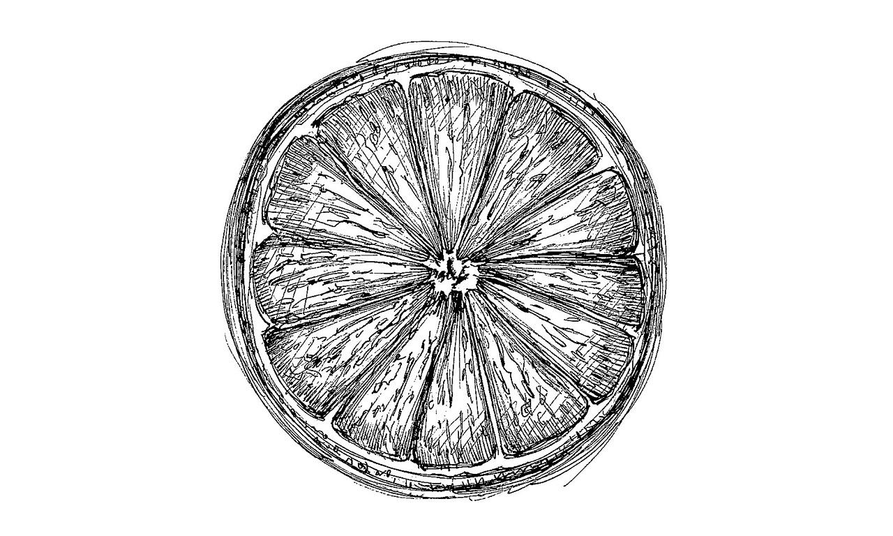 手绘:水果